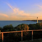 north head manly - I see... by miroslava