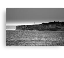 north head manly - watching... Canvas Print