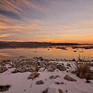 Winter at Mono by Kurt Golgart