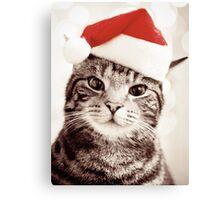 Merry Christmas.. Canvas Print