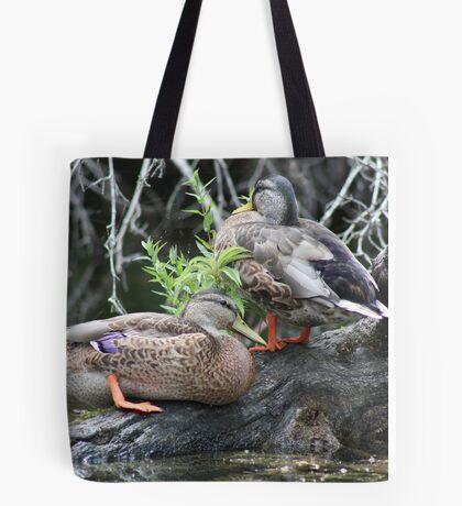The Grey Pair Tote Bag