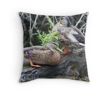 The Grey Pair Throw Pillow