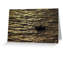 North Head Manly - In sunset rays Greeting Card