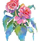 Roseform Begonia watercolor by Pat Yager
