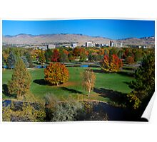 Boise - City of Trees Poster