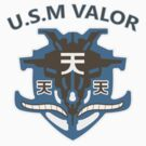 USM Valor Norm by Adam Angold