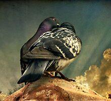 Love Birds by George Lenz