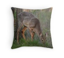 Wild Deer Eats Dinner Throw Pillow