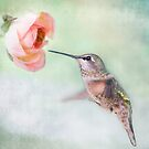 Hummingbird on Green by Susan Gary