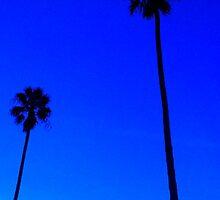 Venice Beach Palm Trees by Ernesto Lopez