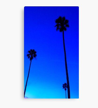 Venice Beach Palm Trees Canvas Print