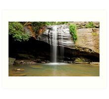 Buderim Falls - Sunshine Coast Qld Australia Art Print