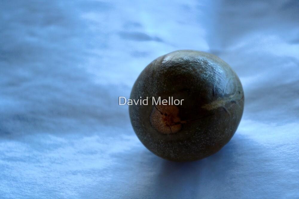 Avocado Stone by David Mellor