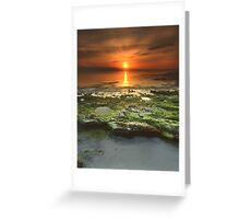 """Greenfield Sunrise"" ∞ Vincentia, NSW - Australia Greeting Card"
