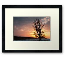 Winter,so lonely cold! But the sun will be... Framed Print