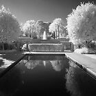 The Pool - Infrared by Hans Kawitzki