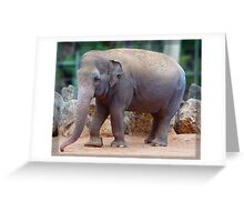 Tricia the Elephant Greeting Card
