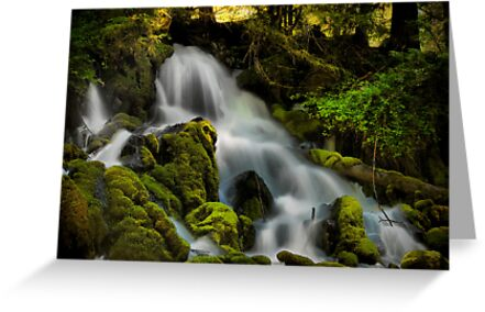 Cold Springs Falls by Charles & Patricia   Harkins ~ Picture Oregon