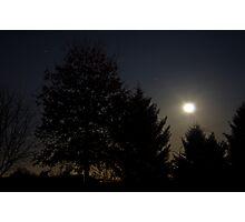 Night Lite Photographic Print
