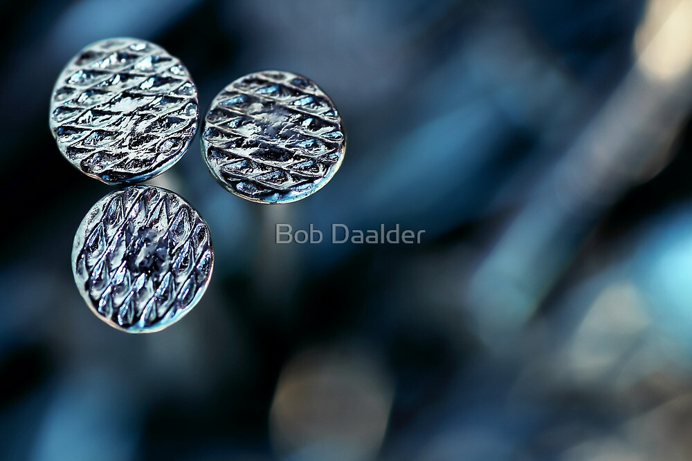Not just nailed... without one... by Bob Daalder