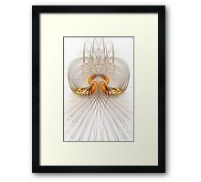A mirror of flames Framed Print