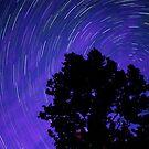 Ohio Night Sky - Star Trails by Gregory Ballos | gregoryballosphoto.com