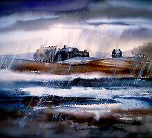 Winter Rain by ©Janis Zroback