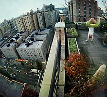 Handstand in rooftop, Yoga in Manhattan, New York by Wari Om  Yoga Photography