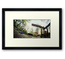 Acroyoga and Aerial Yoga at Central Park, New York Framed Print