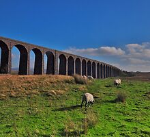 Ribblehead Viaduct. by John Pickles