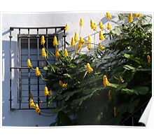 Tropical Blossoms In The City - Flores Tropicales En La Ciudad Poster
