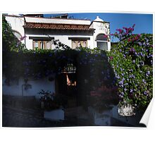 Flowers And Buildings - Flores Y Edificios Poster