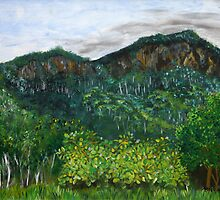 Lansdowne Escarpment by Margo Humphries