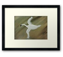 Who Goosed me? watercolor Framed Print