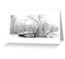 Dying Tree lies in the Freezing Canal Greeting Card