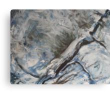 Icy Rapids Canvas Print