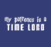 My Patronus is a Time Lord by trekvix