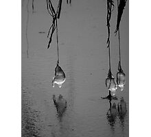 Frozen Water Droplets Photographic Print