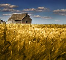 Granary by jphphotography