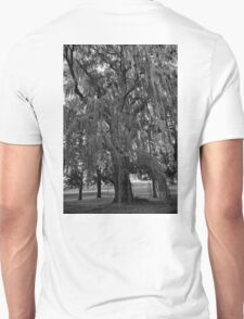 Old Man Willow Weeping  T-Shirt