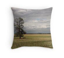 Binya Plains Throw Pillow