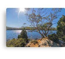 Lake Dobson, Tasmania #3 Canvas Print