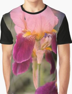 Tall Bearded Iris named Indian Chief Graphic T-Shirt