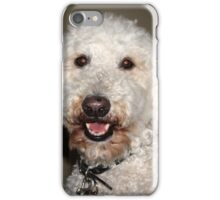 Jake The Labradoodle  iPhone Case/Skin