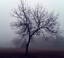 One Foggy Morning by Jane Neill-Hancock