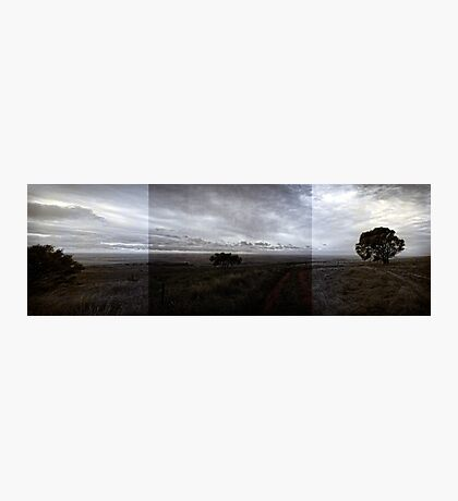 Desolation (A South Australia panorama ) Photographic Print