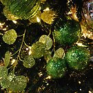 Green Glitter by Marjorie Wallace