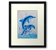 Two Dolphins Framed Print