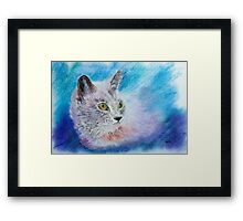 Burmese Cat Framed Print