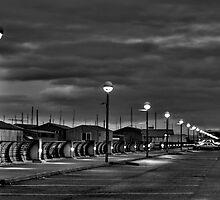 Harbor Walk by Steve Walser